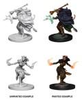 D&D Nolzur's Marvelous Minis - Tiefling Female Warlocks (2)