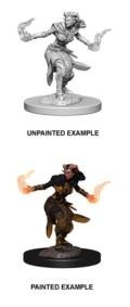 D&D Nolzur's Marvelous Minis - Tiefling Female Warlock 2