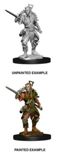 D&D Nolzur's Marvelous Minis - Elf Male Rogue 2