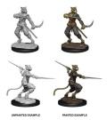 D&D Nolzur's Marvelous Minis - Male Tabaxi Rogues (2)