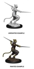D&D Nolzur's Marvelous Minis - Male Tabaxi Rogue 2