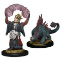 Wardlings - Boy Warlock & Lizard