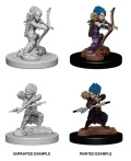 Pathfinder Deep Cuts - Gnome Female Rogues (2)