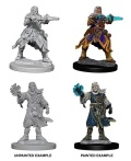 Pathfinder Deep Cuts - Male Human Wizards (2)