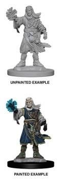 Pathfinder Deep Cuts - Human Male Wizard 2