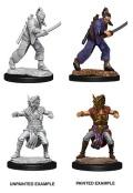D&D Nolzur's Marvelous Minis - Male Human Monk (2)