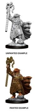 D&D Nolzur's Marvelous Minis - Female Dragonborn Sorcerer 1