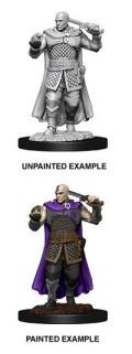 D&D Nolzur's Marvelous Minis - Minsc, Human Ranger