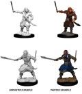D&D Nolzur's Marvelous Minis - Bandits (2)