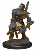 D&D Icons of the Realms Premium Miniatures - Human Male Paladin