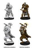 D&D Nolzur's Marvelous Minis - Male Goliath Barbarians (2)