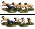 28mm Ancient Britons - Mastiff Pack (5)